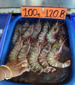 Tiger shrimp sold in  Pattaya Pier, Thailand. Photo: Clay Irving.