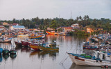 Beruwala Fishery Harbour, Sri Lanka. Photo: Hafiz Issadeen