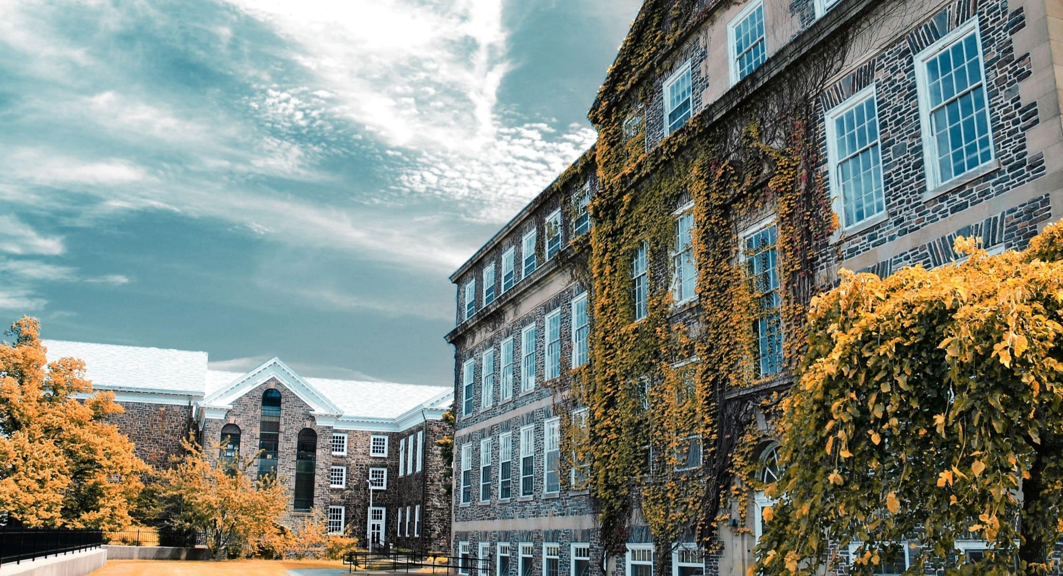 College Uni