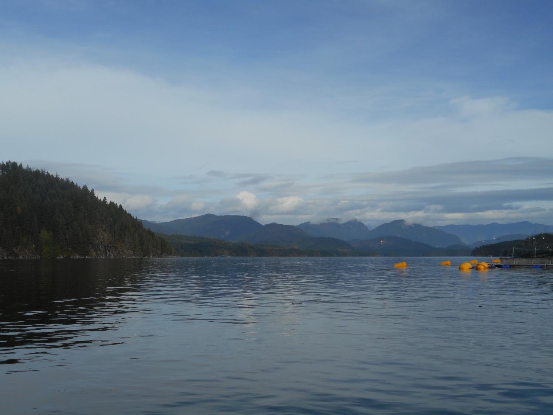 Job Vacancies In Vancouver Island